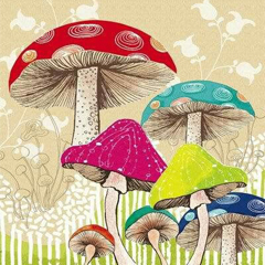 "International drawing contest ""Life of mushrooms"""